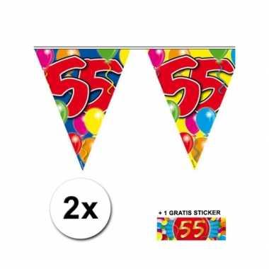 2 gekleurde vlaggenlijnen 55 jaar met sticker