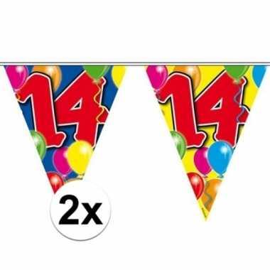 2x gekleurde vlaggenlijn 14 jaar 10 meter