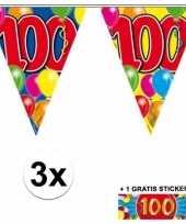 3 gekleurde vlaggenlijnen 100 jaar met sticker