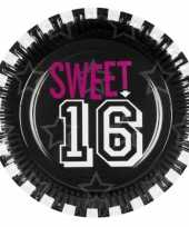 Papieren sweet 16 feestborden